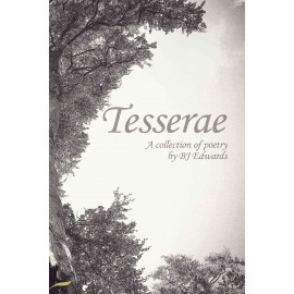 Tesserae by BJ Edwards